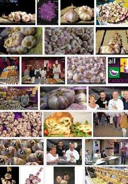 Ail violet de Cadours (aoc)